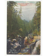 NH White Mountains The Flume Looking Down Vtg Hartman Postcard - $5.52