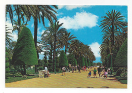 Spain Cadiz Genoese Park Central Walk Parque Promenade Vtg Postcard 4X6 - $5.52