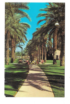 AZ Litchfield Wigwam Country Club Resort Vtg 1977  Postcard - $5.52