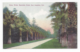 CA Los Angeles Eastlake Park Palm Walk Vintage Postcard - $6.49