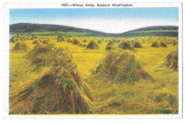 WA Wheat Fields Eastern Washington Vtg Linen Postcard - $4.84