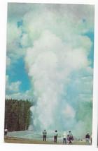 Yellowstone National Park Giant Geyser Upper Basin Wyoming Vintage Postcard - $5.52