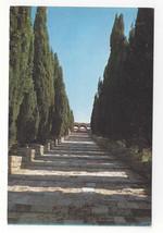 Greece Rhodes Philerimos Road to Monastery Rodi Rhodos Vtg Postcard 4X6 - $6.49
