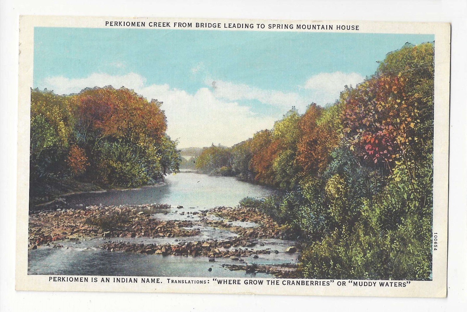 PA Spring Mountain House Perkiomen Creek Vtg Curt Teich Postcard