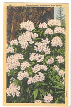 WA Rhododendron Washington State Flower Vtg Linen Postcard - $4.99