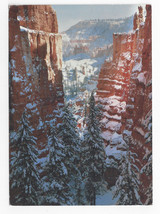 Bryce Canyon UT Winter 1993 Carr Clifton Impact Postcard - $6.49