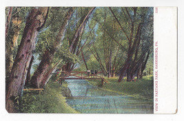 Harrisburg PA Paxtang Park View Vintage UDB Bosselman Postcard - $4.84
