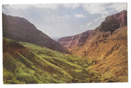 WY Wyoming Shell Canyon Big Horn Mountains Vtg Mike Roberts Postcard - $5.62