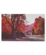 North Carolina Road Autumn Splendor Fall Trees Leaves Mike Roberts Vtg P... - $5.62