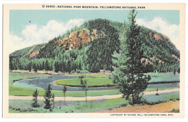 WY Yellowstone National Park Mountain Vtg Haynes Linen Postcard Wyoming - $4.99