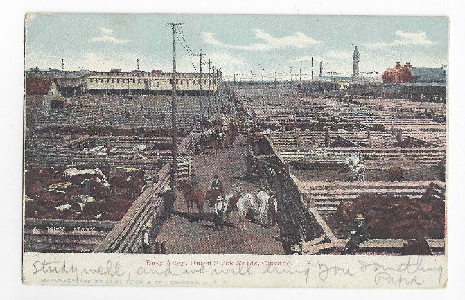 Union Stock Yard Chicago Illinois Busy Alley 1905 Curt Teich UDB Postcard IL - $7.56