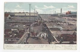 Union Stock Yard Chicago Illinois Busy Alley 1905 Curt Teich UDB Postcar... - $7.56