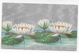Easter Water Lilies Silver Moire Background 1909 Winsch Back Embossed Po... - $7.56