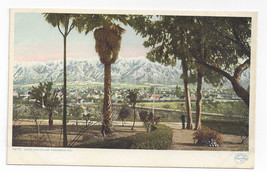 Pasadena CA Snow and Palms Vintage Detroit Publishing California Postcard - $7.56