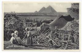 Egypt Cairo Bedouin Camp Lehnert & Landrock Photographers Vintage Postcard - $6.49