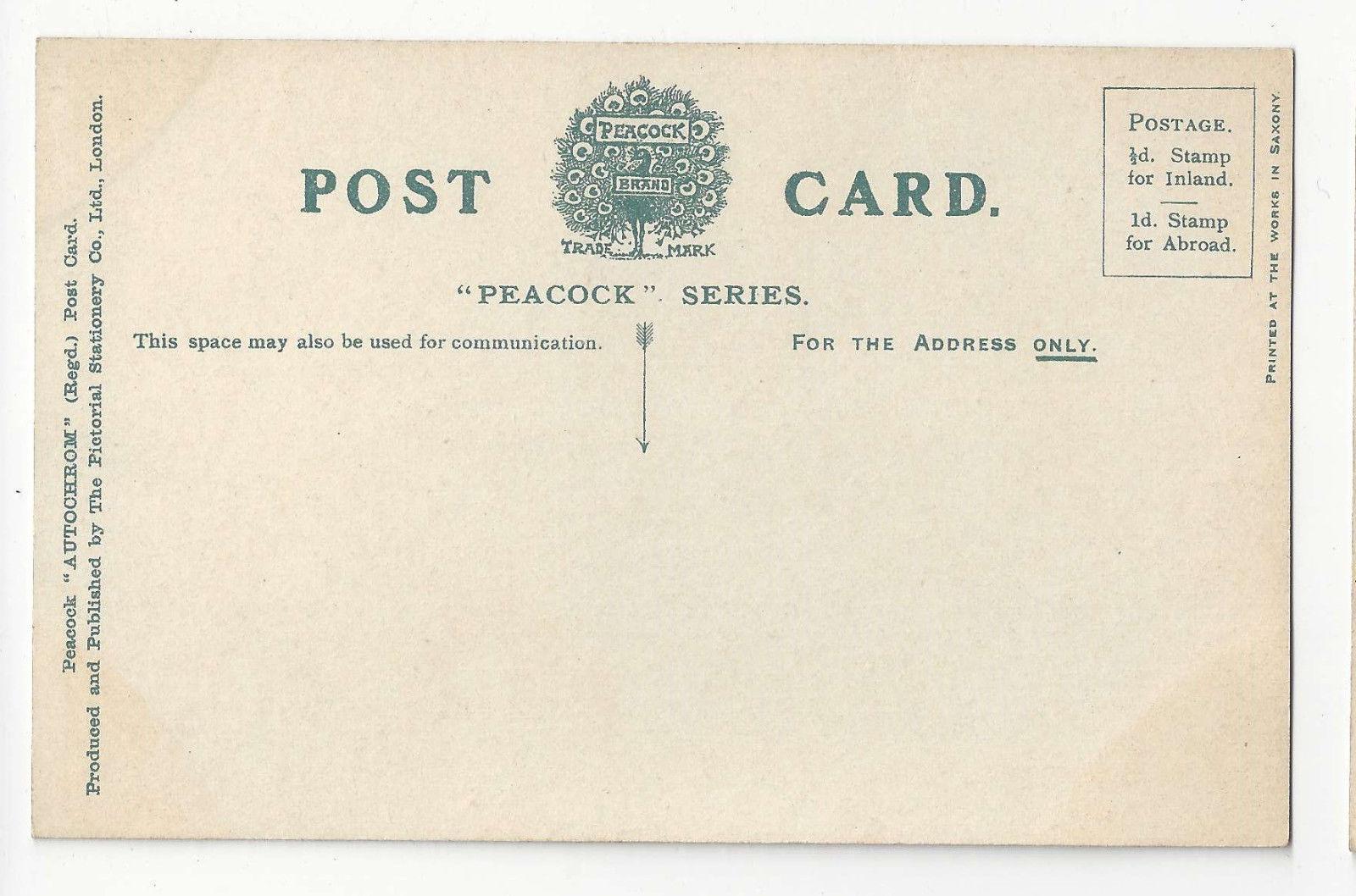 UK Stratford on Avon from the Memorial Vtg Autochrom Postcard ca 1910