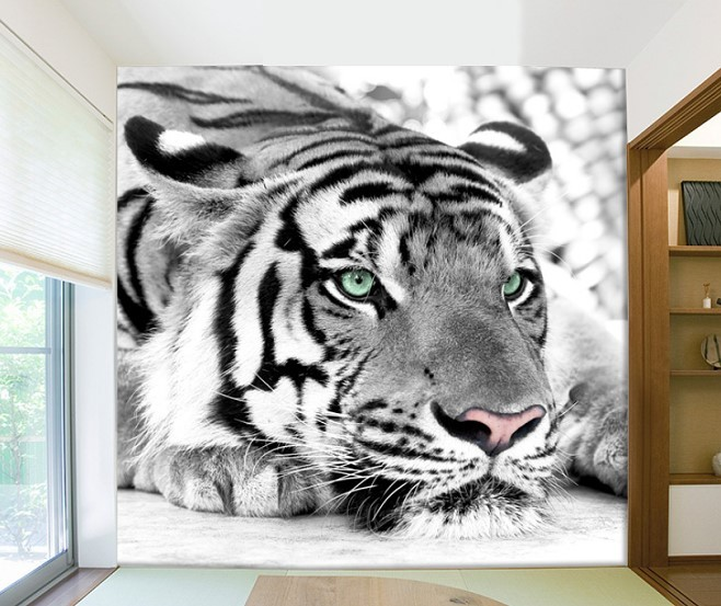 GORGEOUS 3D White Tiger Face Design Wallpaper Mural Wall