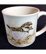 Vtg Otagiri Japan Killdeer Chick Bird Mug Charadrius Vociferus Shorebird... - $29.21