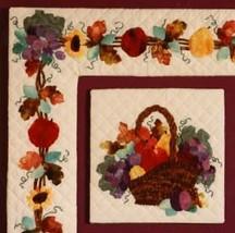 "Curiosity Quilt Pattern -Harvest Fruit Basket Applique #704   12"" block ... - $6.00"