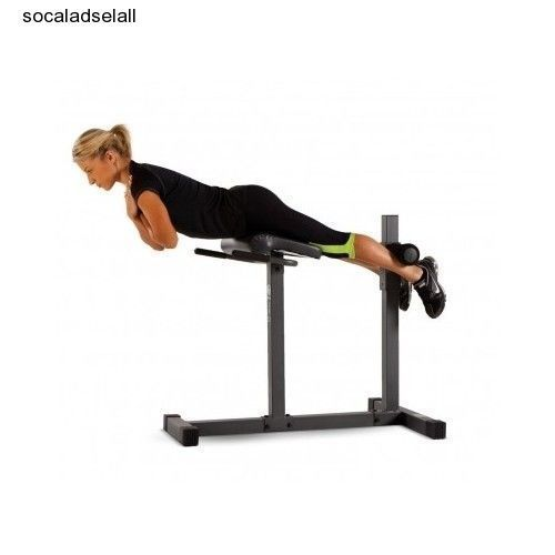 Lower Back Extension Bench 28 Images Dtx Fitness Back