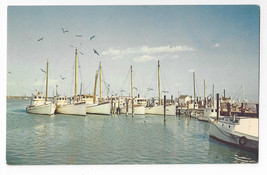 Tangier Island Boats Harbor Port Fishing Virginia Vintage Postcard - $8.54