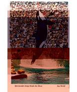 Shamu Seaworld Orlando Florida Killer Whale Vtg Mike Roberts Postcard 4X6 - $6.64