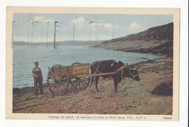 Canada Gaspe Habitant Ox Cart Belle Anse Vtg Henderson Postcard 1941 - $7.59