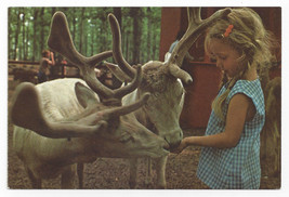 Great Adventure Jackson NJ Amusement Park Tame Reindeer 1974 Postcard 4x6 - $9.45
