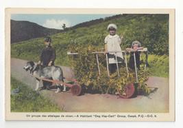 Canada Gaspe Children Dog Hay Cart Habitant P. Q. Vtg HV Henderson Postcard - $9.45