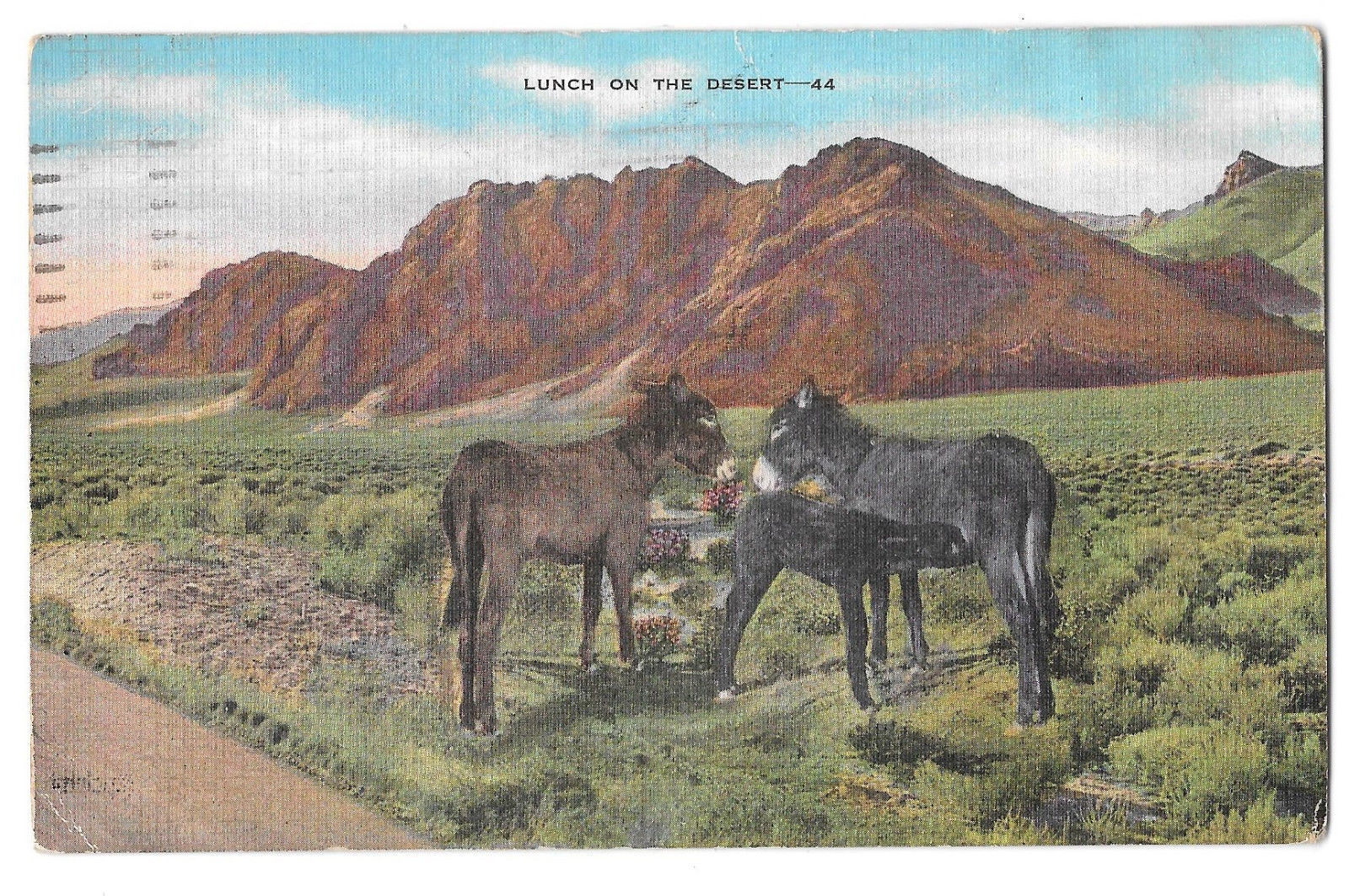AZ Lunch on the Desert Donkeys Burros Vtg Linen Postcard Arizona