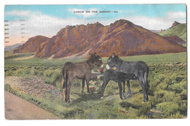 AZ Lunch on the Desert Donkeys Burros Vtg Linen Postcard Arizona - $6.36