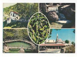 Greece Rhodes Valley of the Butterflies Multiview Vtg Postcard 4X6 - $6.36