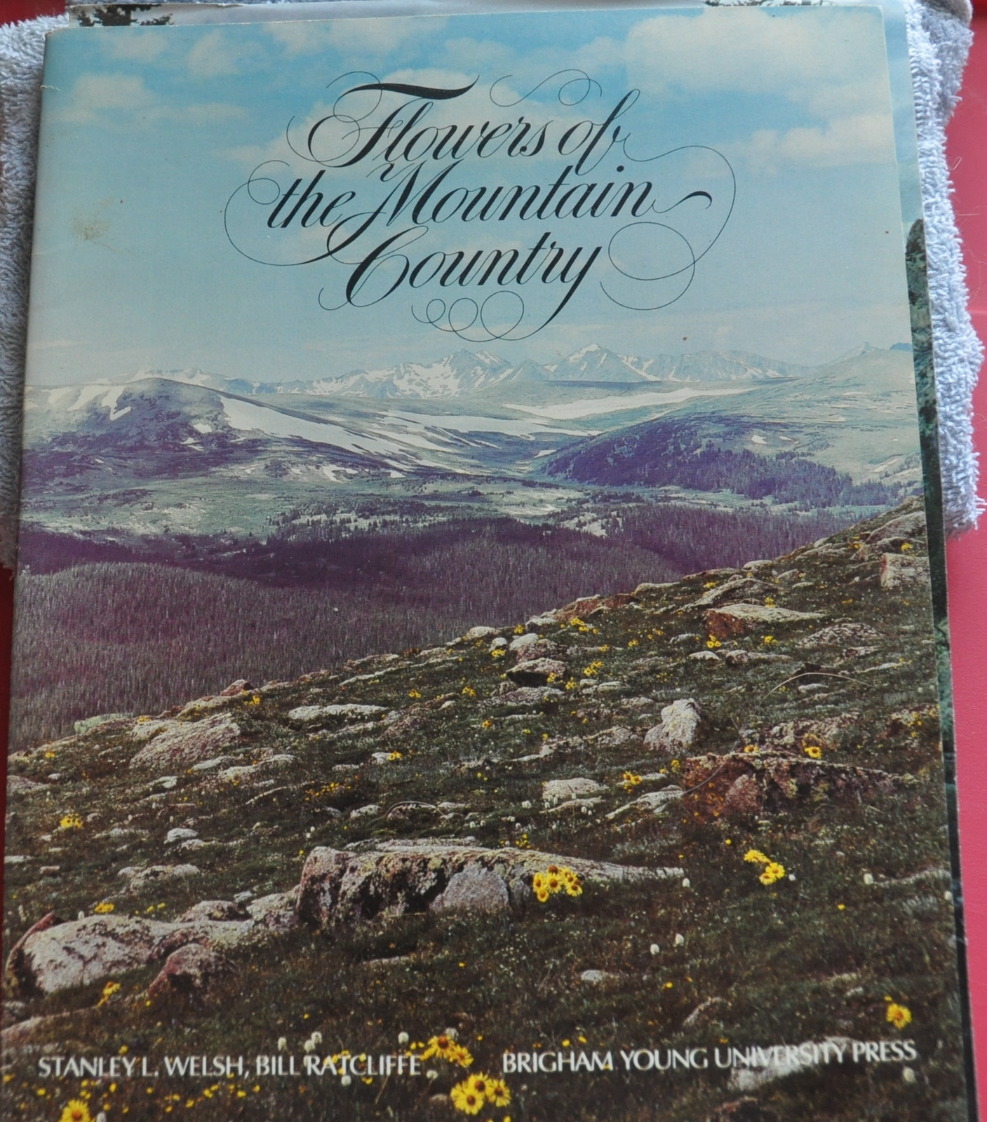 Flowers of the mountain country   cover