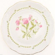 Tienshan Floriade Pattern Dinner Plate Replacement China Dinnerware Tabl... - $8.99