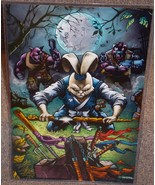 Teenage Mutant Ninja Turtles Usagi Glossy Print 11 x 17 In Hard Plastic ... - $24.99