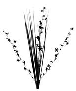 "12 BLACK stems 21"" onion grass spray metallic pick with stars - $14.95"