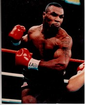 Mike Tyson Heavyweight Champion DOG Vintage 11X14 Color Boxing Memorabilia Photo - $15.95