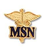 MSN Master of Science Nurse Pin Gold Caduceus Medical Emblem Insignia Pi... - $16.63