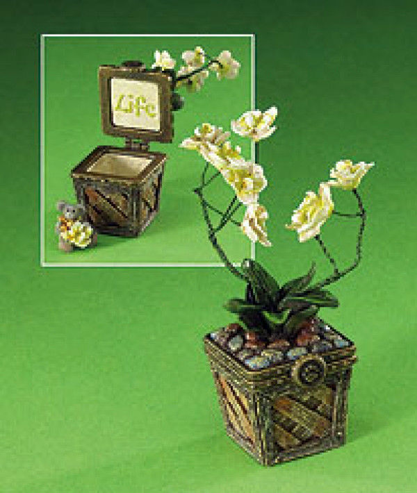 "Boyds Bears Treasure Box ""Leila's Orchid w/ Bloom McNibble""-#4013373-1E-NIB-2009"