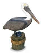 Lifesize BROWN PELICAN Sculpture, limited ed. - $347.00