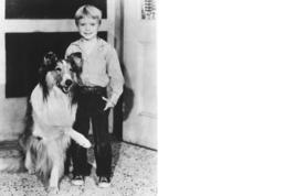 Lassie John Provost Vintage 8X10 BW TV Memorabilia Photo  - $4.99