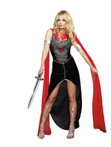Dreamgirl Scandalous Sword Warrior Halloween Costume Adult Size Large - $46.39