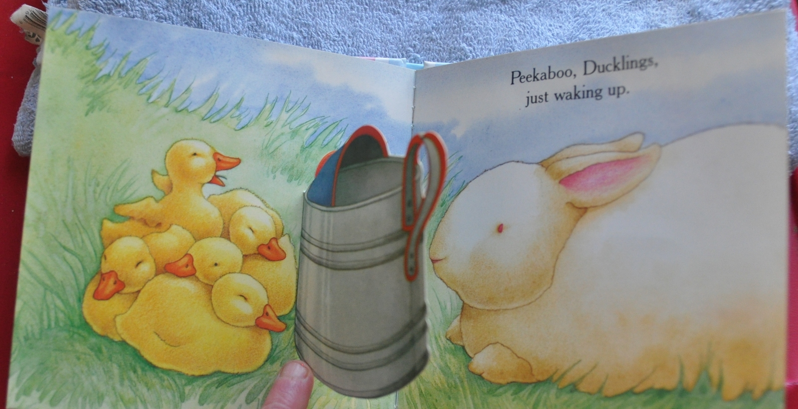 Lift the Flap Book of Playing Peek a Boo - Peekaboo Bunny & Baby Animals