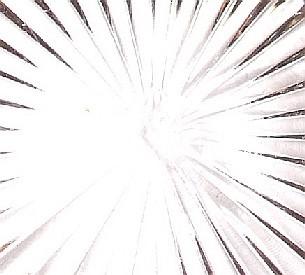 Item image 5