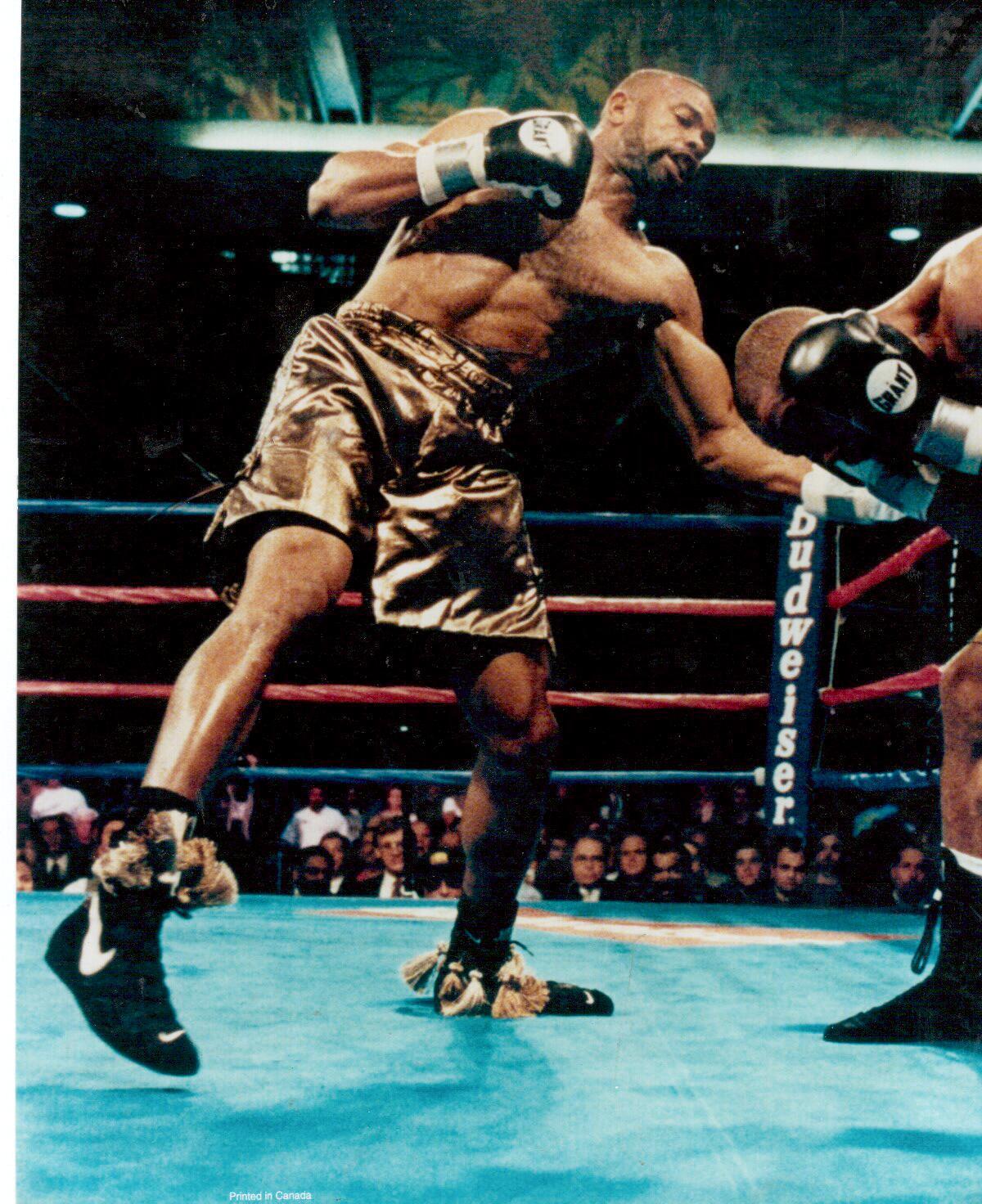 Roy jones jr boxing poster