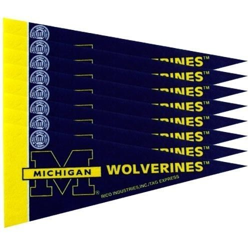 MICHIGAN WOLVERINES 8 PIECE MINI PENNANTS SET PACK of FELT TEAM LOGO & COLORS