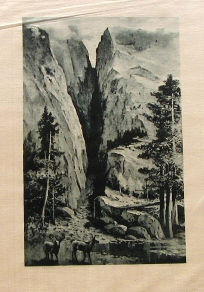 Primary image for Photogravure Picturesque California J. Muir Julian Rix Satin Print Merced Canyon