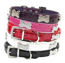 Crystal Bone Croc Dog Pet Collar * Faux Leather * 5 Shimmering Colors * ... - €15,74 EUR+