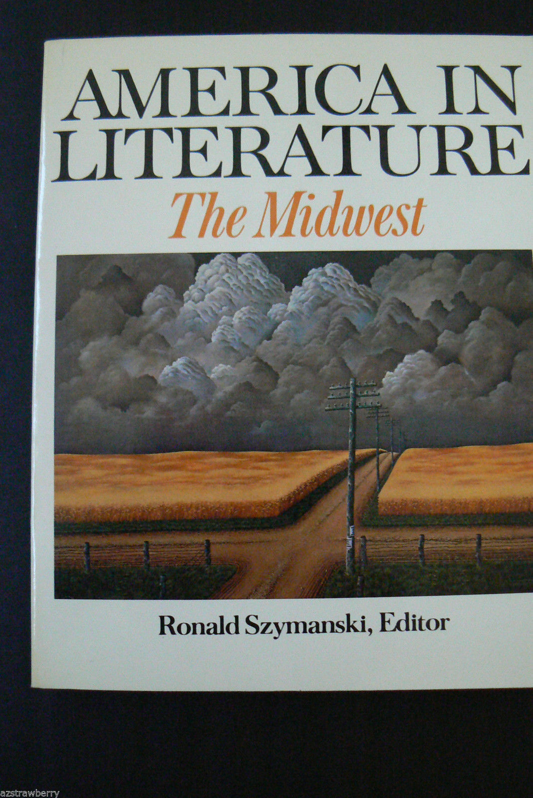 Primary image for THE MIDWEST AMERICA IN LITERATURE 1979 R. Szymanski book Scribners SSP 43