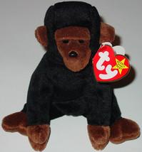 TY BEANIE BABIES Congo large Gorilla #4160 1996 BEANBAG PLUSH - $20.00